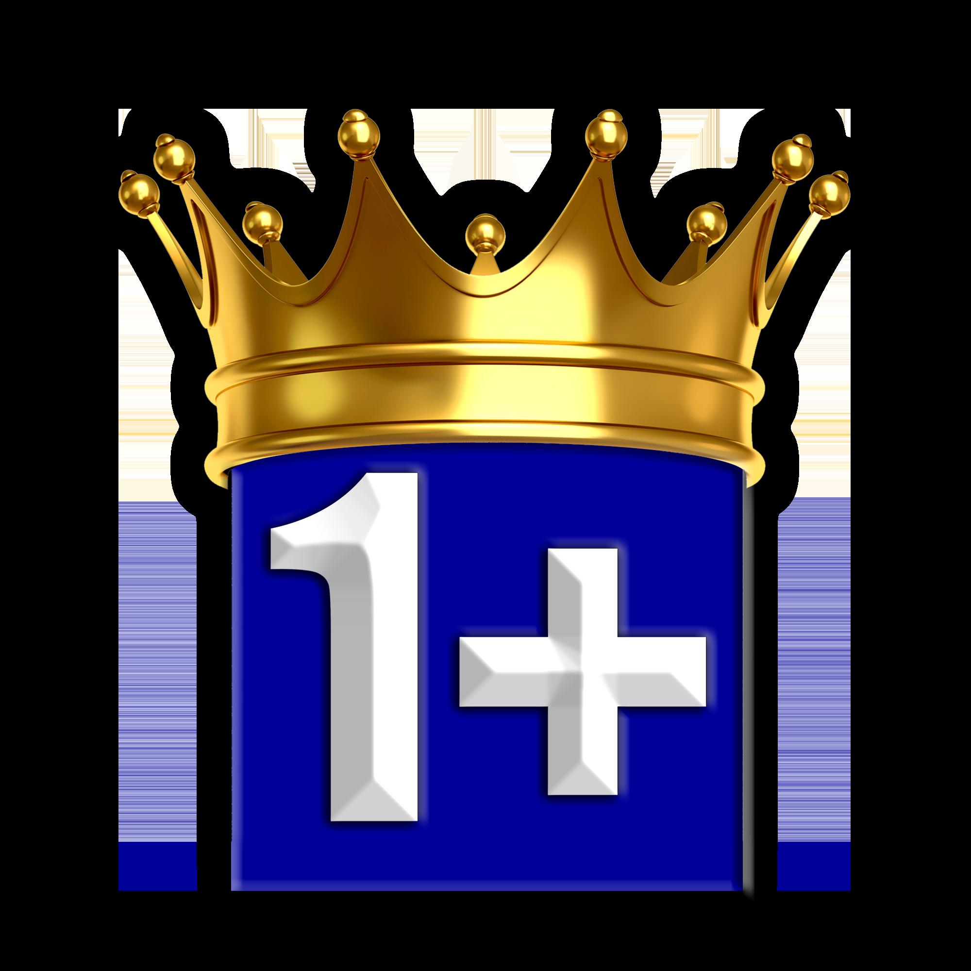 1+MULTI Logo