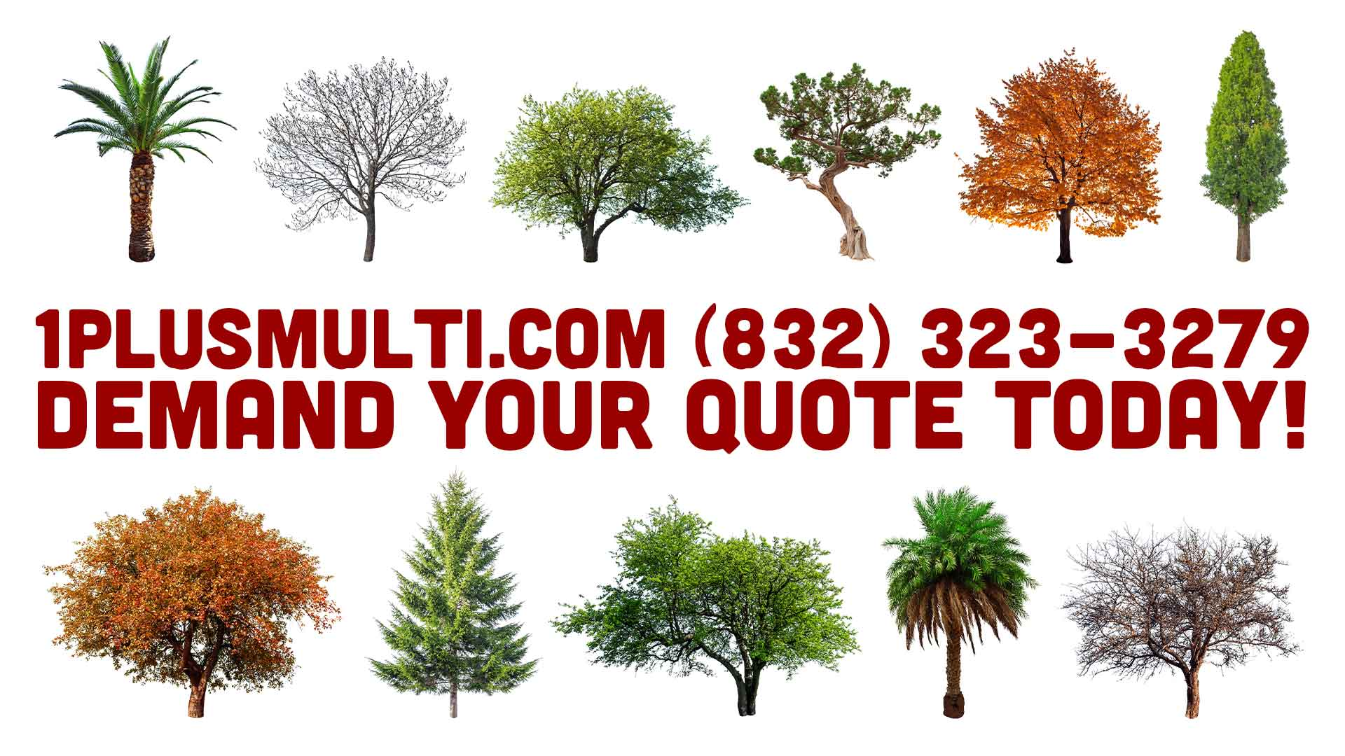 All-types-tree-trimming-services-2