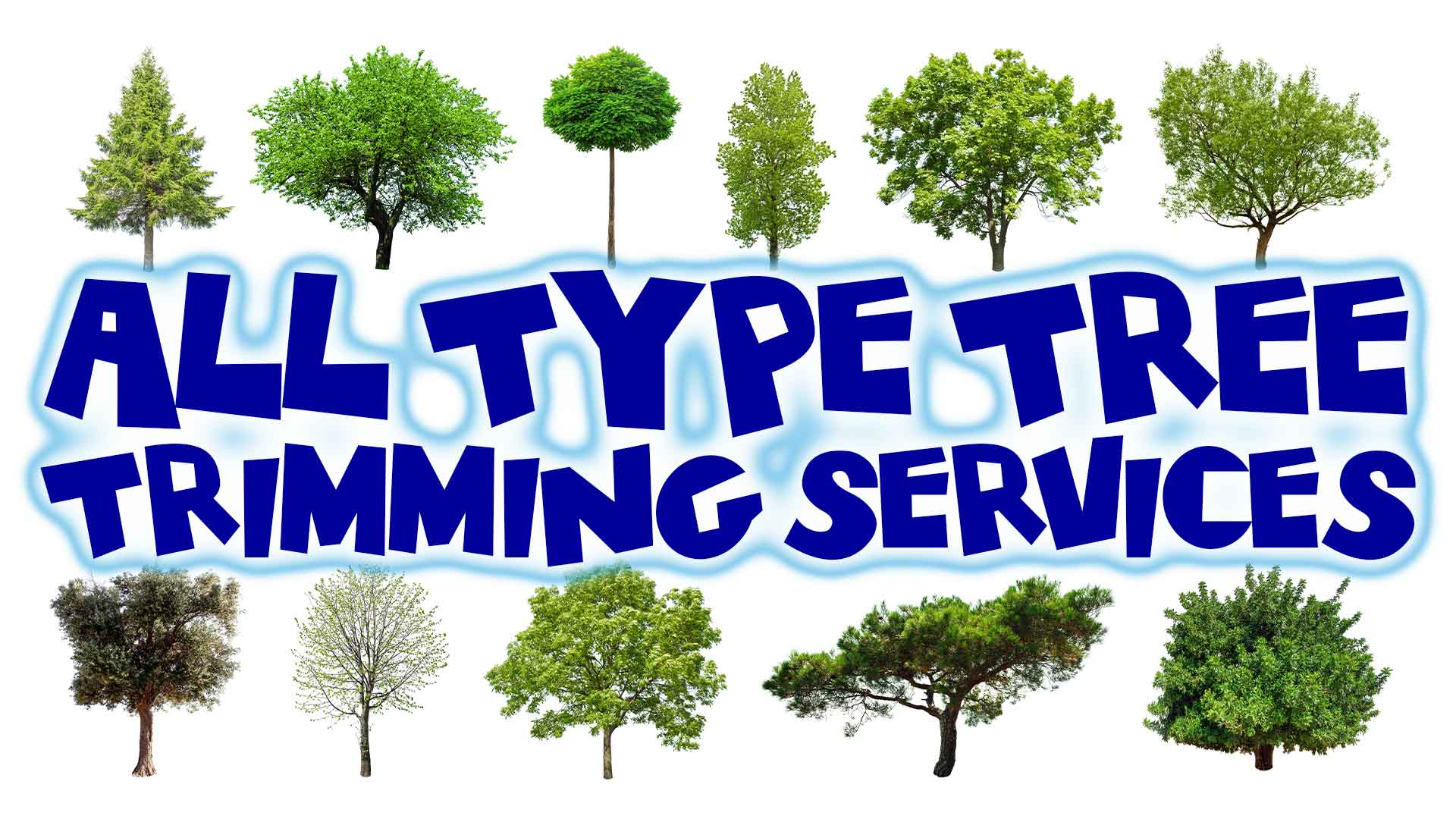 All-types-tree-trimming-services